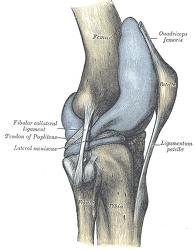 만성 무릎 통증에 대한 침술과 가짜 침술의 비교 연구 결과