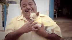 휴가철 필수 서비스, 와이파이(Wi-fi)를 찾는 개 '와이파이 독(Wi-fi Dogs)' - T모바일의 데이터 로밍 광고 영상, 호세의 와이파이 개(Jose's Wifi Dogs) [한글자막]
