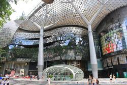 [싱가폴여행] 오차드로드