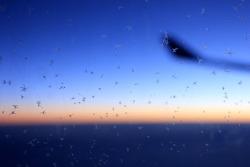체코 항공 타고 프라하로 가던 하늘길 - 장거리 비행도 OK!