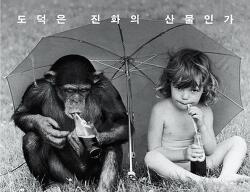 침팬지가 인간보다 똑똑하다고?