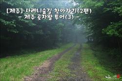 [제주]사려니숲길 찾아가기(2편) : 제주 곶자왈 투어(3)