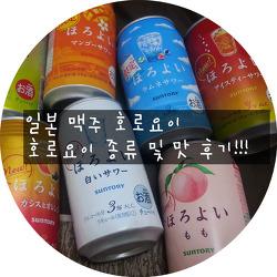[일본] 일본 호로요이 종류와 맛 후기