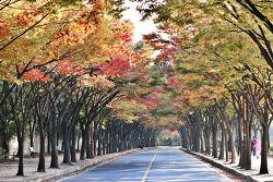 가을날의 인천대공원