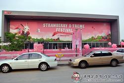 스무디킹 스트로베리 익스트림 페스티벌 - Day 2 (백지영, 에일리, 포맨, 소울맨)