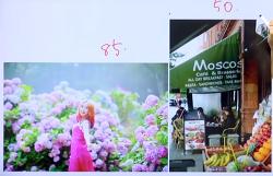 [카메라]6.브랜드별 렌즈의 종류와 구매 팁 (카메라렌즈종류)