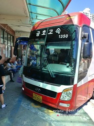 의정부에서 동대구까지 고속버스 이용하기. (의정부터미널과 대구터미널 비교)
