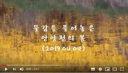 [영상]물감을 풀어놓은 듯한 안양천의 봄(2019.04.04)