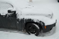 2018년 11월 13일 페어뱅크스 지역에 내리는 눈 (폭설)