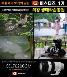 [G마스터즈1기] sony70-200gm(금유령) 과 의왕 왕송호수공원