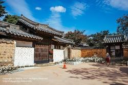 대구 여행 / 목화꽃을 볼 수 있는 남평문씨인흥(본리)세거지 / 수봉정사