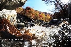 Into the fall, Korea