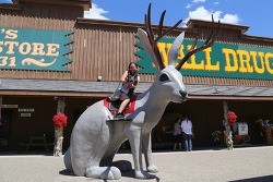 자칭 '세계 최대의 약국'인 사우스다코다(South Dakota)의 관광지, 월드럭스토어(Wall Drug Store)