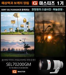 [G마스터즈1기] sony sel70200gm(금유령), 망원으로 나홀로 스냅! - 하늘공원 -