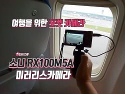 소니 RX100M5A 리얼 사용후기 장점, 단점! 일본 여행용 카메라로 추천