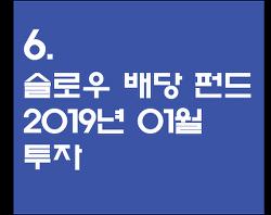 6. 슬로우 배당 펀드 2019년 1월 투자 - 코스피 저평가에 대한 단상