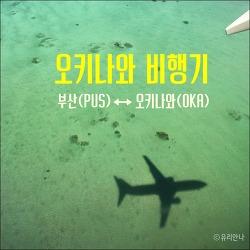[오키나와여행] 새 입국신청서 작성방법, 부산 오키나와 비행시간