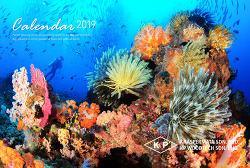Undersea Travel 2019 Calendar