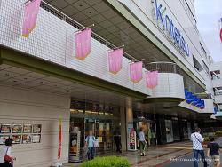 와카야마시 쇼핑 킨테츠백화점 식품관 구경하기