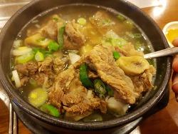 대전 갈비탕 맛집 대흥동 월산본가 고기가 끝내줘요!