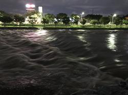 비온뒤 강변