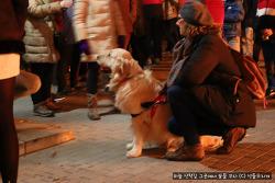 빵 하나로 반려동물의 건강을 책임지는 스페인의 축제