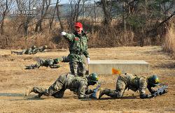신병 1241기 2교육대 극기주 - 각개전투훈련