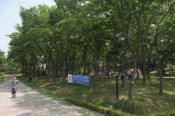 하남 나무고아원 피크닉