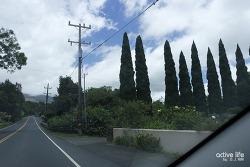 할레아칼라산 국립공원 하와이 마우이에서 만나는 환상의 화산! 하와이여행시 필수추천