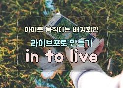 아이폰 GIF 배경화면 라이브포토 만들기 inToLive