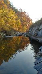 가을의 풍경~