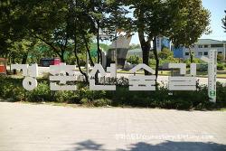 서울 사진찍기 좋은 장소 경춘선숲길 화랑대역 출사