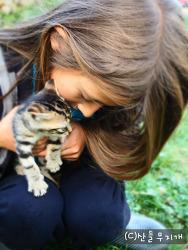 요즘 새끼 고양이들과 사랑에 빠진 우리 아이들