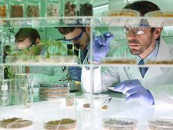 실험실에서 만들어지는 미래 식량! 음식과 기술이 만난 '푸드테크'
