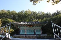 충남가볼만한곳  서천 봉서사 보물 제1751호 목조석가여래삼불좌상