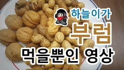 [정월대보름 특집] 하늘이가 부럼 먹을뿐인 영상