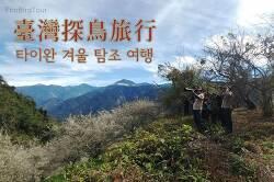 동아시아 철새 루트 탐방 : 타이완 4박5일 (2019.1)