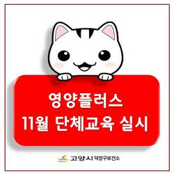 [덕양구보건소] 영양플러스 11월 단체교육 실시♥
