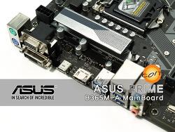 더욱 업그레이드된 가성비! ASUS B365M-A 코잇 필드테스트