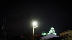 일본 오징어회