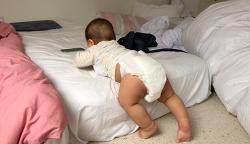 생후 8개월 3주, 알프스 등정에 성공하다!