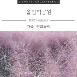 올림픽공원 나들이 : 언제나 그대로 왕따나무와 요즘 핫한 핑크뮬리 보러 (Feat. 서울 핑크뮬리 명소)