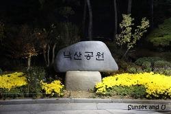 서울 야경명소 대학로 낙산공원 산책로 데이트코스