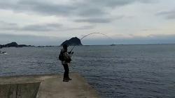 [쇼어지깅 조행기]새섬 등대포인트