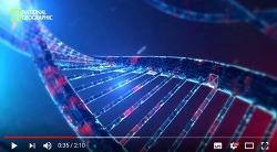 유전자 코드를 바꾸어 영생할 수 있는 기술 - 유전자 가위