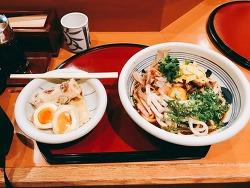 [오사카 우메다 맛집] 하가쿠레 냉우동