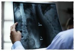 척추 건강을 지키는 생활 속 바른 자세