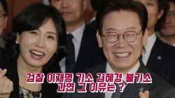 이재명 기소 김혜경 불기소, 나는 이렇게 생각한다