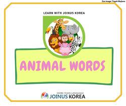 [New Words] Animals