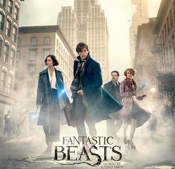 영화 신비한 동물사전(Fantastic Beasts and Where to Find Them, 2016) 다시보기, 결말, 줄거리